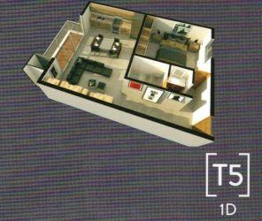 T5 1D